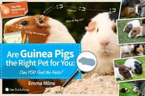 ThePetDetective-GuineaPigs-Cover