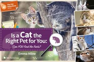 pet-detectives-cats